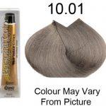Personal Color 10.01 - Ash Natural Platinum Blond 100ml - Personal Colour (Cosmo service).  Personal Color 10.